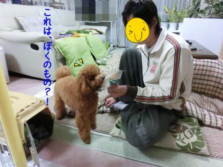 CIMG2219_convert_20121228131510.jpg