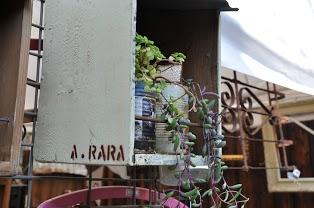 ARARA1.jpg
