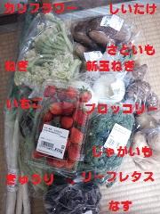 DSC_1435.jpg