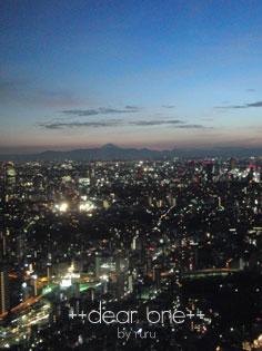 東京タワー120816_6