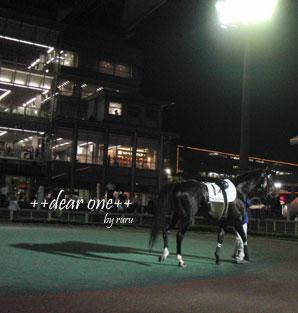 東京シティ競馬120817_4