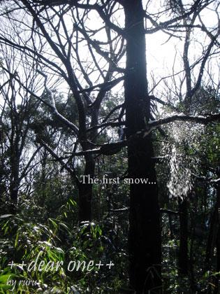 初雪130115_14