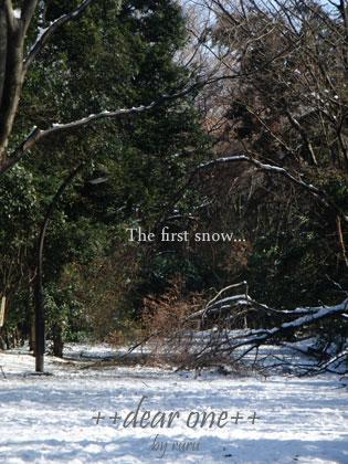初雪130115_15