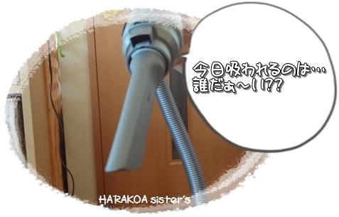 20120730-1.jpg