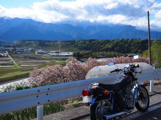 bokashi_convert_20120602194032.jpg