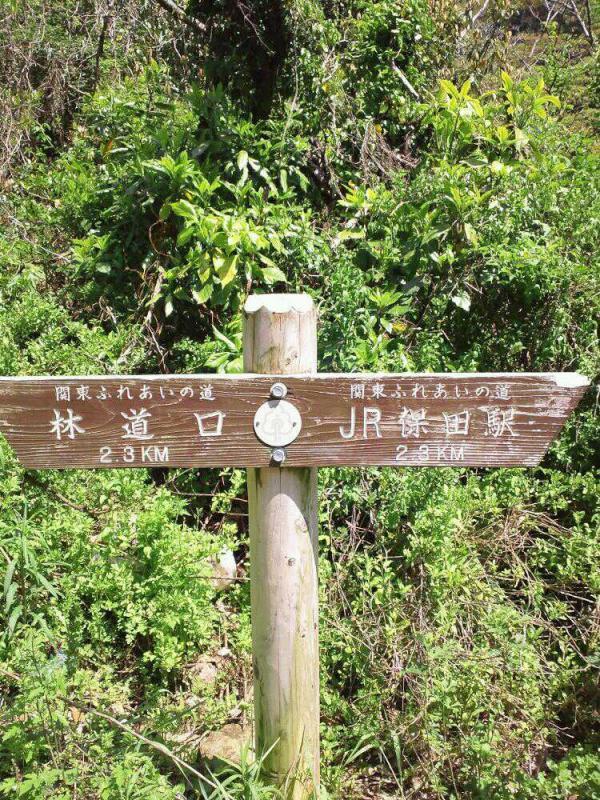 保田駅への道のり
