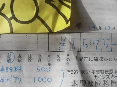 2012121411260549c.jpg
