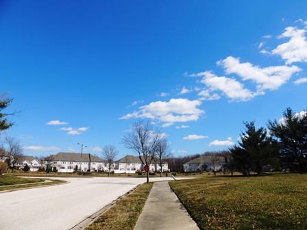 spring (2)