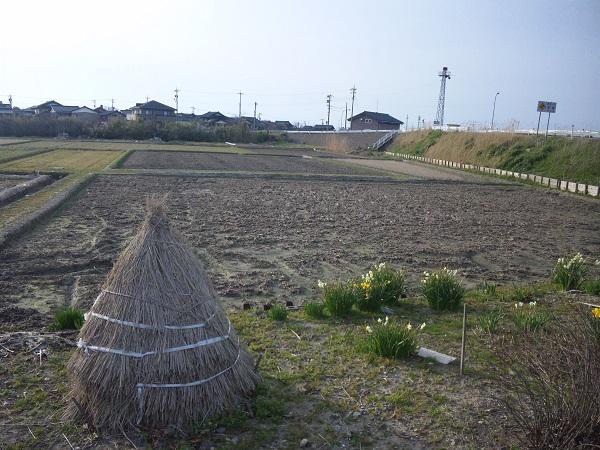 taokoshi.jpg