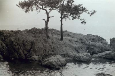 ushiwakamaru4.jpg