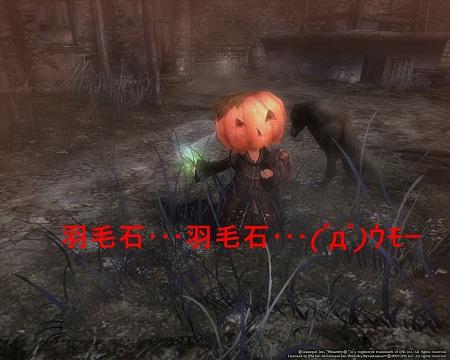 20121121010607f2d.jpg