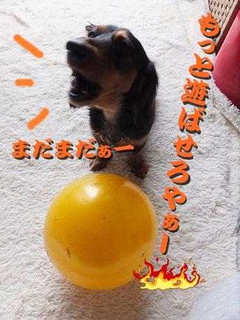 13-01-14_5116.jpg