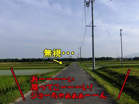 DSCF8802.jpg