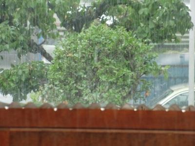 8 6 雨が降ってきそうだぞ 012