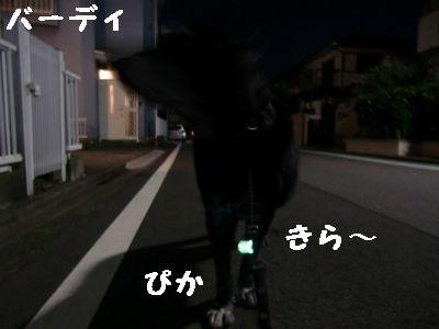 夜のお散歩 003