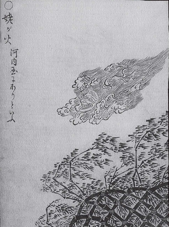 姥ヶ火(うばがび) - 言葉の隠れ家