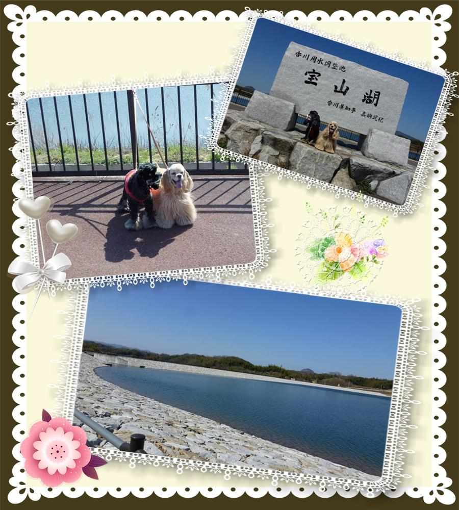 宝山湖1001