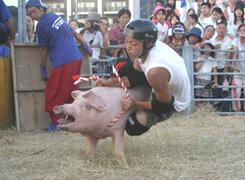 mikame_carnival10.jpg
