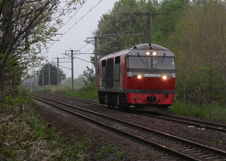 DF11IMG_5081-3.jpg