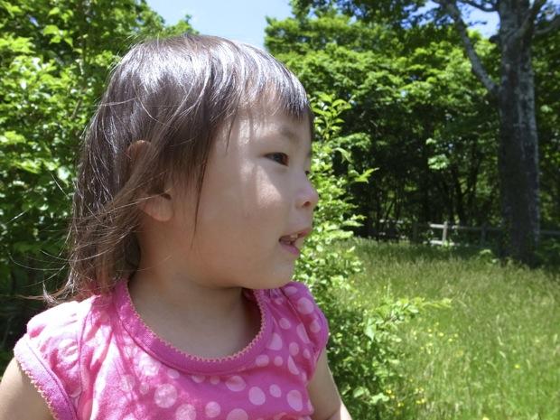 20120607AzumayamaDaizenbara16.jpg