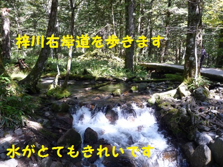 201409301249340e2.jpg