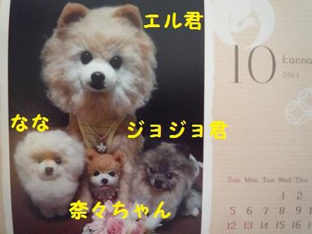 2014100410084557b.jpg