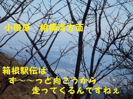 20141125114809eb3.jpg