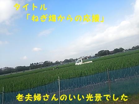 201412011515569b2.jpg
