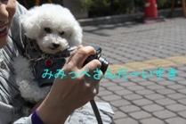 fc2blog_20130414231527ffa.jpg