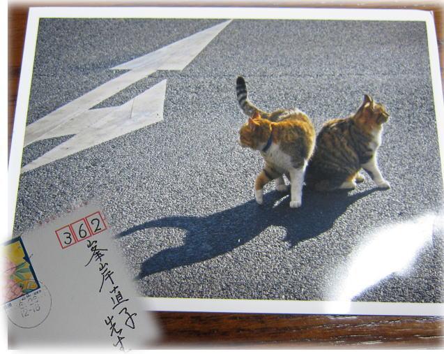 yokoyasanhagaki_20120629062956.jpg
