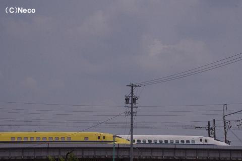 12060803.jpg