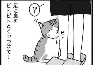 足に鼻をピトピトとくっつけて… ピトピト