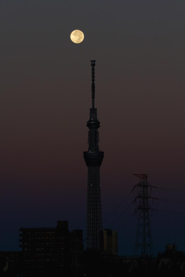20121002134821c8c.jpg