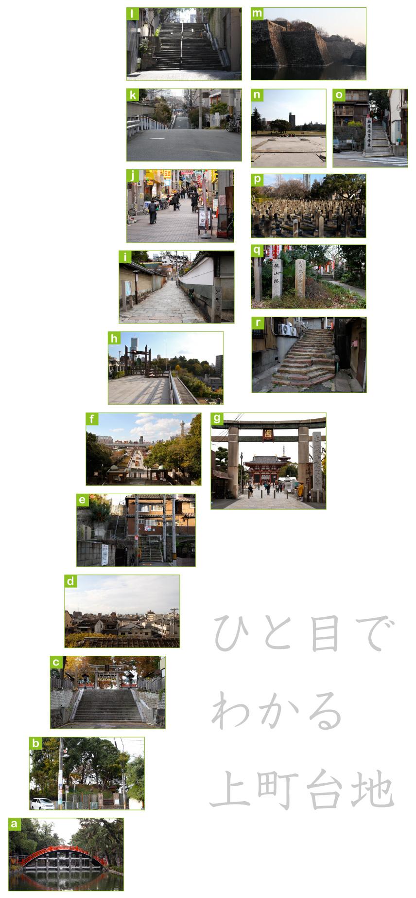 daichi_point_03.jpg