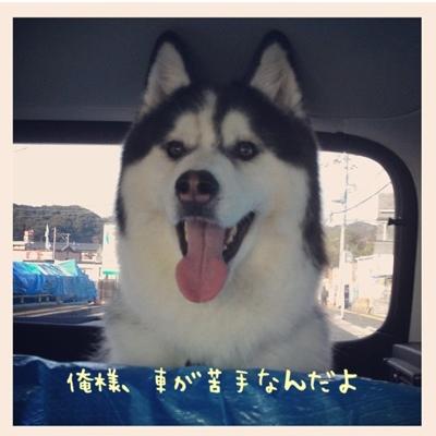 fc2blog_20130406094606e06.jpg