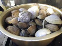 [写真]茹でるまでのバカ貝