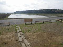 [写真]水を張った田んぼの様子