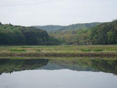 [写真]田んぼの水面に映る三舟山