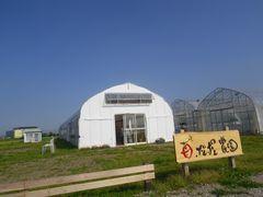[写真]青空の下、正面から望むポレポレ農園の様子(白い受付ハウスと木の看板)