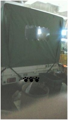 2011-02-06-01-001.jpg