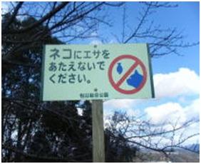 愛媛県松山総合公園とは?虐待をあおる看板が数々!石を投げられ死んだ白猫や両耳をそがれた猫がいます001