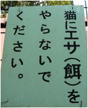 愛媛県松山総合公園とは?虐待をあおる看板が数々!石を投げられ死んだ白猫や両耳をそがれた猫がいます009