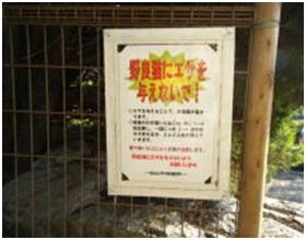 愛媛県松山総合公園とは?虐待をあおる看板が数々!石を投げられ死んだ白猫や両耳をそがれた猫がいます017