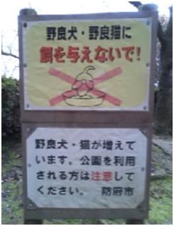 2012-01-27-007.jpg