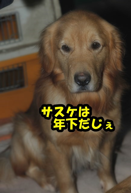 DSC_8830.jpg