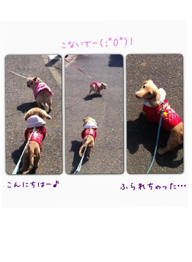 image_20130224181647.jpg