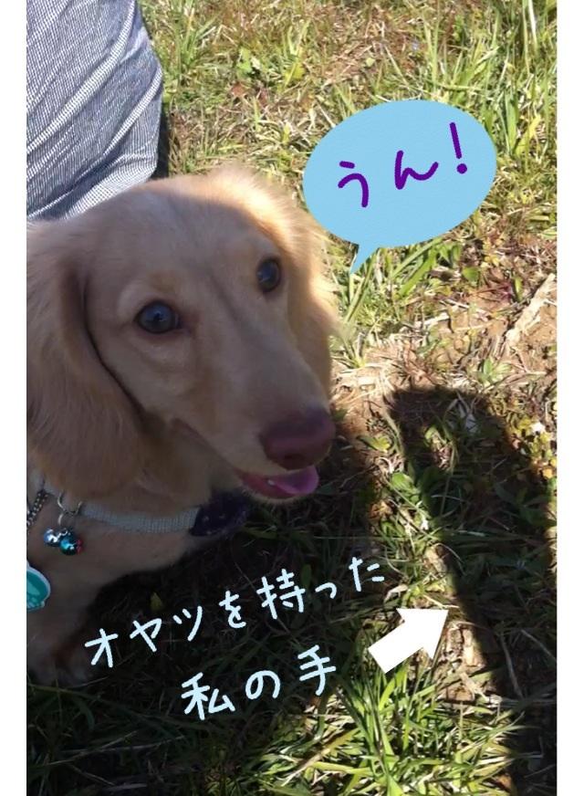 image_20130317015748.jpg