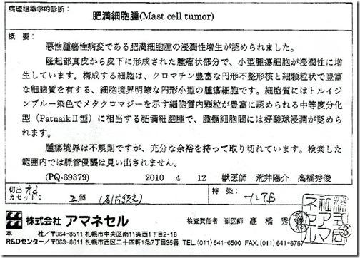 100415byourikensahoukoku