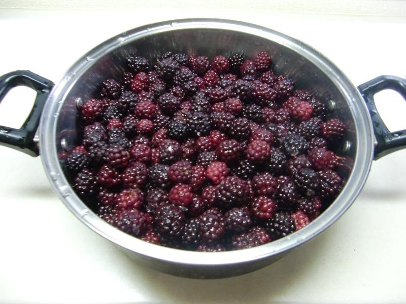 110814blackberry2