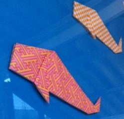 鯉フェス1